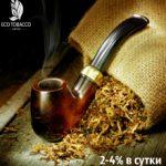 Eco Tobacco — ОБЗОР| РЕГИСТРАЦИЯ | РЕФБЭК — 4%